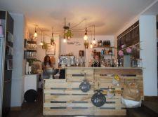 Evolution Café