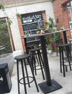 evolution cafe 12