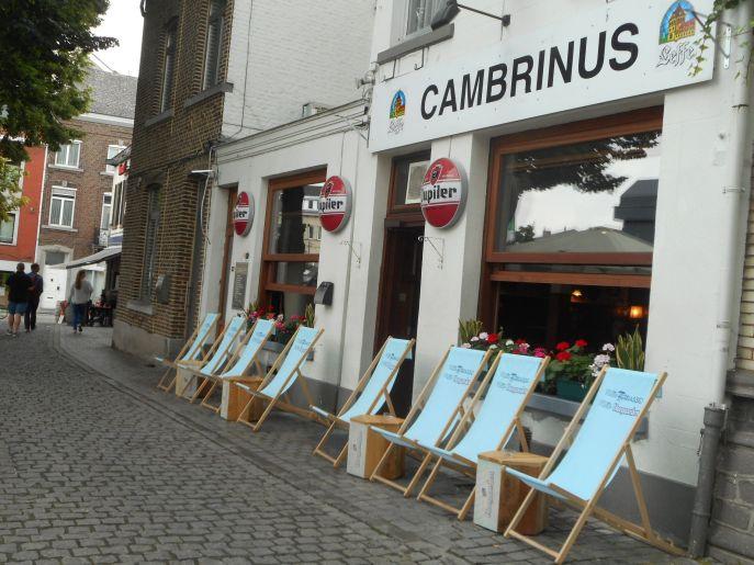 cambrinus 6